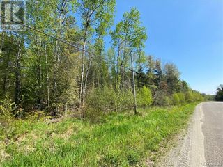 Photo 16: 5264 Rte 770 in Rollingdam: Vacant Land for sale : MLS®# NB058269