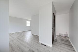 Photo 13: 10916 36A Avenue in Edmonton: Zone 16 House for sale : MLS®# E4246893