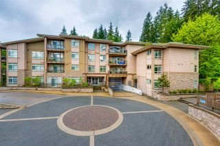 Photo 20: 108 3294 MT SEYMOUR Parkway in North Vancouver: Northlands Condo for sale : MLS®# R2178823