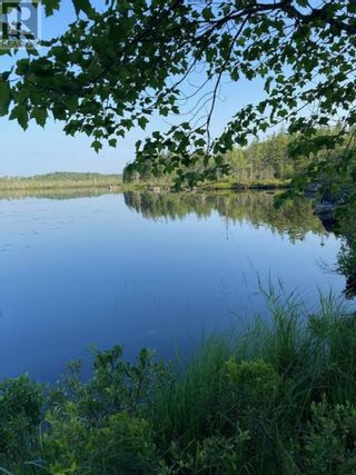 Photo 3: Lot Hirtle Road in Voglers Cove: Vacant Land for sale : MLS®# 202116540