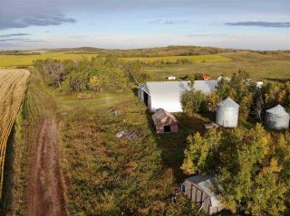 Photo 5: Twp 424 RR 92: Rural Provost M.D. Rural Land/Vacant Lot for sale : MLS®# E4170013