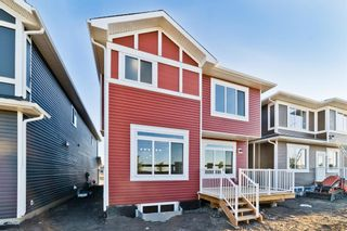 Photo 38: 110 Creekside Way SW in Calgary: C-168 Detached for sale : MLS®# A1144318