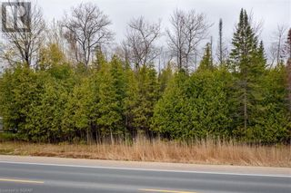 Photo 12: LT 29 26 Highway W in The Blue Mountains: Vacant Land for sale : MLS®# 40109206