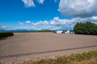Photo 18: 17731 WESTMINSTER Highway in Richmond: East Richmond Agri-Business for sale : MLS®# C8038030
