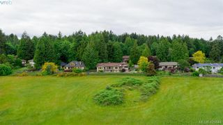 Photo 10: 1775 Barrett Dr in NORTH SAANICH: NS Dean Park House for sale (North Saanich)  : MLS®# 840567