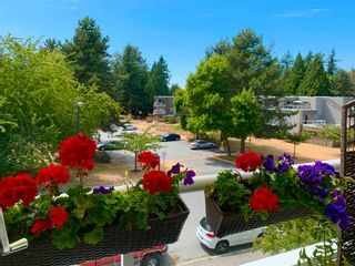 """Photo 23: 312 1840 E SOUTHMERE Crescent in Surrey: Sunnyside Park Surrey Condo for sale in """"Southmere Mews West"""" (South Surrey White Rock)  : MLS®# R2602062"""