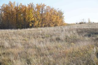 Photo 14: 17 53214 RR13: Rural Parkland County Rural Land/Vacant Lot for sale : MLS®# E4266457