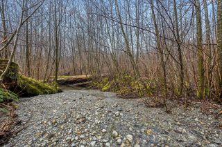 Photo 51: NE1/4SEC15 Gordon River Rd in Port Renfrew: Sk Port Renfrew Land for sale (Sooke)  : MLS®# 864408