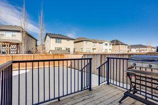 Photo 29: 517 Cranford Drive SE in Calgary: Cranston Detached for sale : MLS®# A1078027