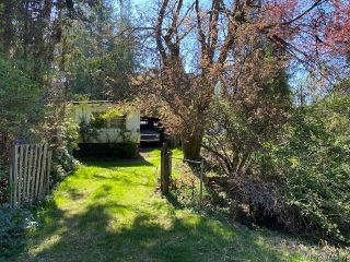 Photo 6: 3617 Vanland Rd in : ML Cobble Hill Land for sale (Malahat & Area)  : MLS®# 874530