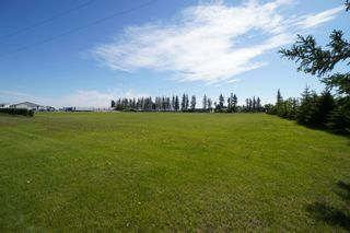 Photo 54: 66063 Road 33 W in Portage la Prairie RM: House for sale : MLS®# 202113607