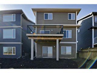 Photo 33: 140 FIRESIDE Place: Cochrane House for sale : MLS®# C4004650