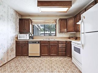 Photo 12: 216 Whitewood Place NE in Calgary: Whitehorn Detached for sale : MLS®# A1116052