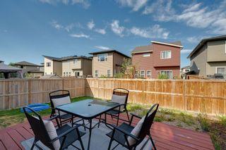 Photo 41: 183 Walden Terrace SE in Calgary: Walden Detached for sale : MLS®# A1123149