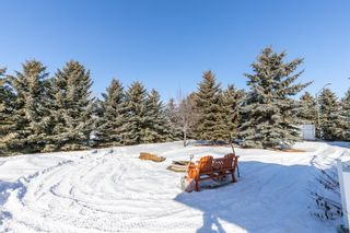 Photo 41: 243038 Range Road 264: Rural Wheatland County Detached for sale : MLS®# A1075148