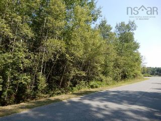 Photo 7: Lot West River Drive in Durham: 108-Rural Pictou County Vacant Land for sale (Northern Region)  : MLS®# 202122246