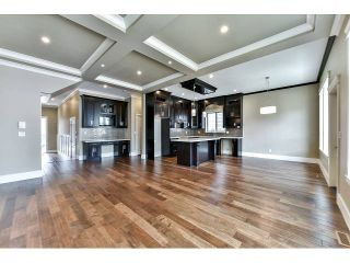Photo 4: 20955 80A Avenue in Langley: Willoughby Heights House for sale : MLS®# F1438496