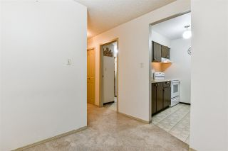 """Photo 3: 103 37 AGNES Street in New Westminster: Downtown NW Condo for sale in """"Agnes Court"""" : MLS®# R2565240"""