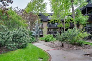 Photo 21: 20 3519 49 Street NW in Calgary: Varsity Apartment for sale : MLS®# A1117151
