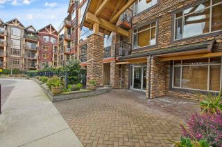 """Photo 6: 386 8288 207A Street in Langley: Willoughby Heights Condo for sale in """"Yorkson Creek"""" : MLS®# R2582373"""