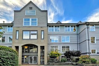 Photo 4: 106 20200 56 Avenue in Langley: Langley City Condo for sale : MLS®# R2620442