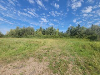 Photo 6: HWY 29 RR 175: Rural Lamont County Rural Land/Vacant Lot for sale : MLS®# E4260440