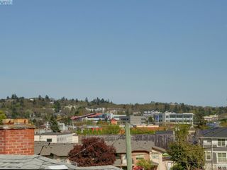 Photo 15: 3246 Irma St in VICTORIA: SW Rudd Park House for sale (Saanich West)  : MLS®# 785071