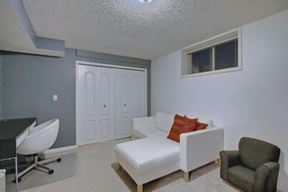 Photo 39: 328 Templeton Circle NE in Calgary: Temple Detached for sale : MLS®# A1074791