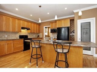 Photo 6: 19640 73B AV in Langley: Willoughby Heights House for sale : MLS®# F1413032