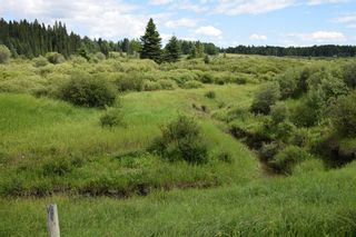 Photo 17: 7350 584 highway: Rural Mountain View County Detached for sale : MLS®# A1101573