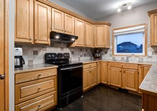 Photo 10: 103 DOHERTY Close: Red Deer Detached for sale : MLS®# A1147835
