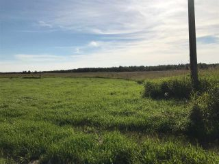 Photo 35: 57525 Rg Rd 214: Rural Sturgeon County Rural Land/Vacant Lot for sale : MLS®# E4237624