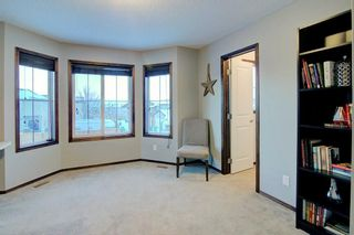Photo 20: 180 CRANBERRY Circle SE in Calgary: Cranston Detached for sale : MLS®# C4222999