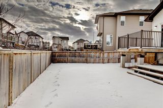 Photo 33: 10 PRAIRIE SPRINGS Bay SW: Airdrie Detached for sale : MLS®# C4285641