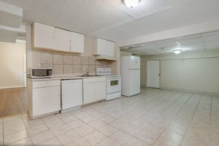 Photo 25: 42 STIRLING Road in Edmonton: Zone 27 House for sale : MLS®# E4252891