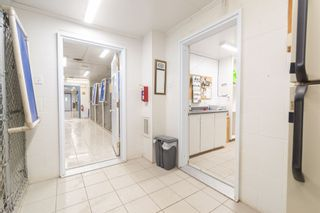 Photo 12: 10301 Highway 201 in Meadowvale: 400-Annapolis County Commercial  (Annapolis Valley)  : MLS®# 202106043