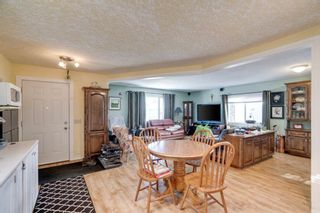 Photo 8: 10 Abalone Crescent NE in Calgary: Abbeydale Detached for sale : MLS®# A1072255