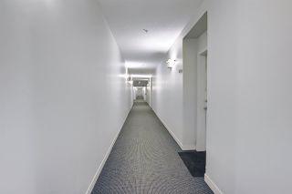 Photo 41: 217 10523 123 Street in Edmonton: Zone 07 Condo for sale : MLS®# E4236395