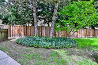 Photo 19: 125 7837 120A Street in Surrey: West Newton Townhouse for sale : MLS®# R2168671