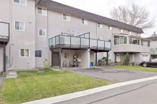"""Photo 34: 8 10900 NO. 3 Road in Richmond: South Arm Townhouse for sale in """"GARDEN MANOR"""" : MLS®# R2551668"""