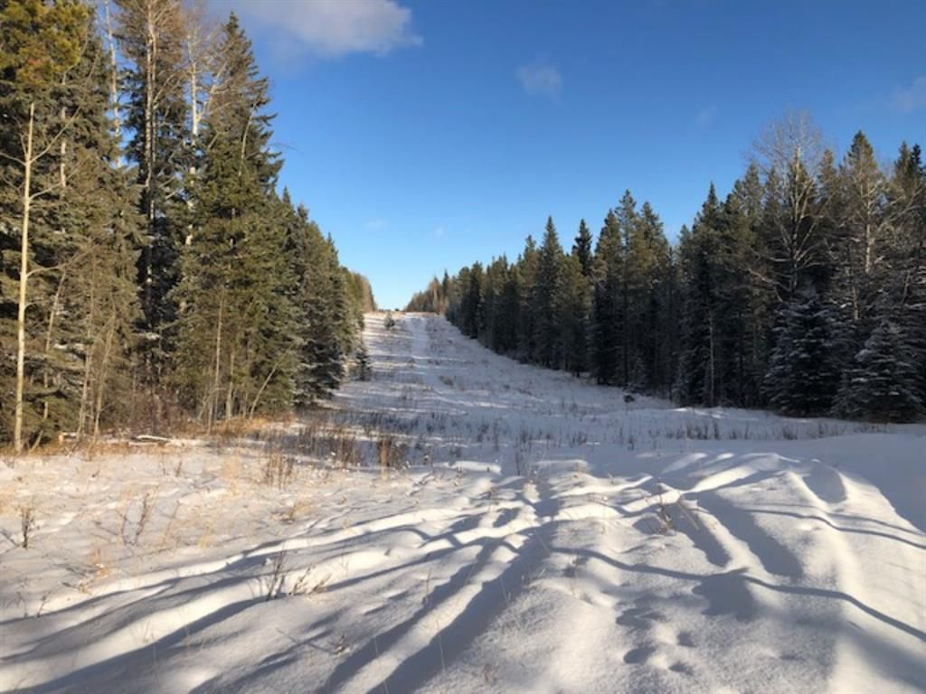 Main Photo: On Range road 8-0  , Section 19, 36, 7, W5: Rural Clearwater County Land for lease : MLS®# A1055389