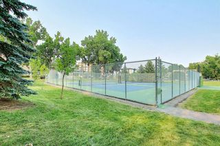 Photo 30: 302 2316 17B Street SW in Calgary: Bankview Apartment for sale : MLS®# A1147214