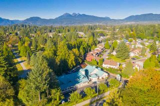 Photo 7: 21409 LOUGHEED HIGHWAY in Maple Ridge: East Central Office for sale : MLS®# C8034546