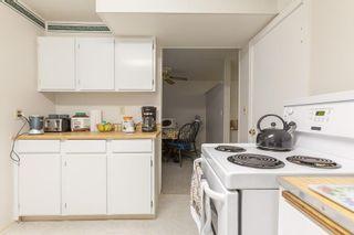 Photo 21: 8735 92B Avenue in Edmonton: Zone 18 House for sale : MLS®# E4249129