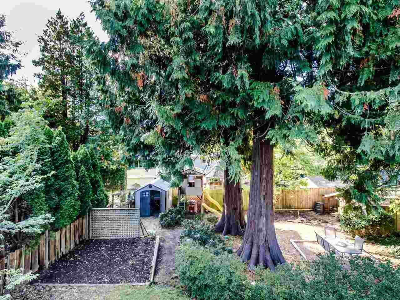 Photo 21: Photos: 11505 PEMBERTON Crescent in Delta: Annieville House for sale (N. Delta)  : MLS®# R2512135
