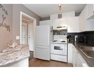 """Photo 10: 403 5759 GLOVER Road in Langley: Langley City Condo for sale in """"COLLEGE COURT"""" : MLS®# F1442596"""