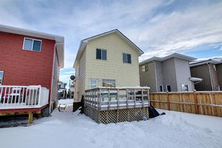 Photo 36: 66 Redstone Road NE in Calgary: Redstone Detached for sale : MLS®# A1071351
