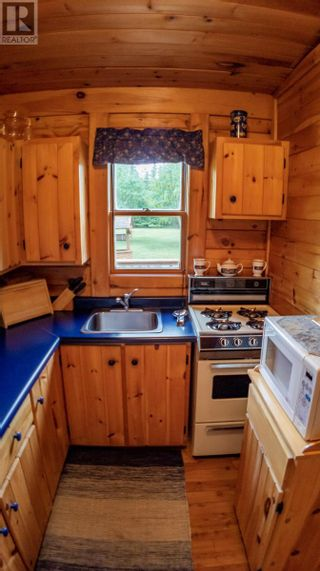 Photo 47: 9 Indian Arm West Road in Lewisporte: Recreational for sale : MLS®# 1233889