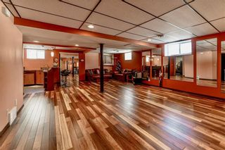 Photo 19: 10 Meadow Ridge Drive in Winnipeg: Richmond West Residential for sale (1S)  : MLS®# 202006400
