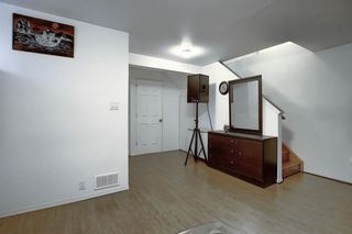 Photo 28: 47 Appleburn Close SE in Calgary: Applewood Park Detached for sale : MLS®# A1049300